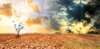 Compunere despre o lume înnebunită de secetă