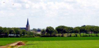compunere Descrierea unui peisaj de câmpie după imagine