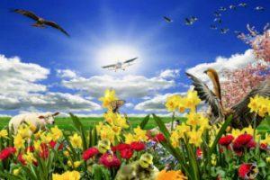 Primăvara înseamnă bucurie și culoare