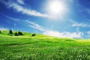 Compuenre O zi însorită de primăvară